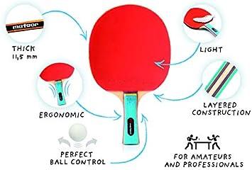 Pala Tenis de Mesa Table Tennis Set 2 Raquetas 3 Pelotas de Ping-Pong para Principiantes y avanzados Raqueta Tenis de Mesa para ni/ños y Adultos Ping Pong para Entrenamiento y Partidos