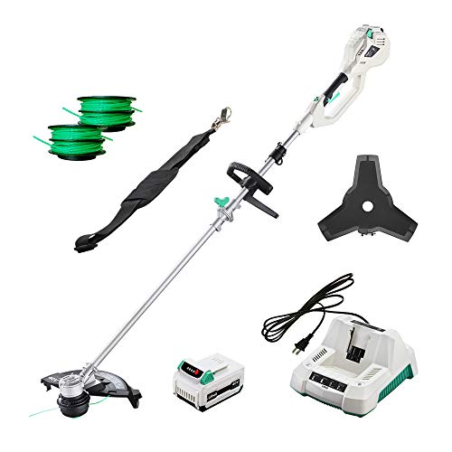 LiTHELi 40V Cordless Grass Trimmer 14 inches 2 in 1 with 2.5AH Battery and Charger