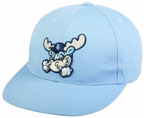 WILMINGTON BLUE ROCKS Adult Cap Minor League Officially Licensed MiLB Replica Hat