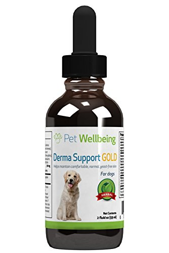 Pet WellBeing - Derma Support Gold - Natural Support for Healthy Coat in Dogs - 2oz(59ml)