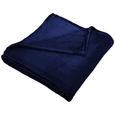 Pinzon Velvet Plush Blanket - Twin, Navy