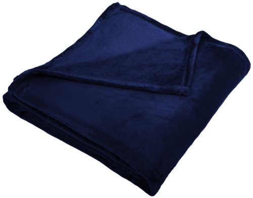 Price comparison product image Pinzon Velvet Plush Blanket - Full/Queen, Navy