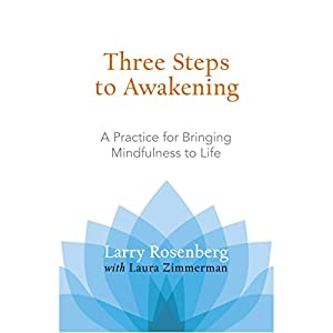 Three Steps to Awakening Hörbuch