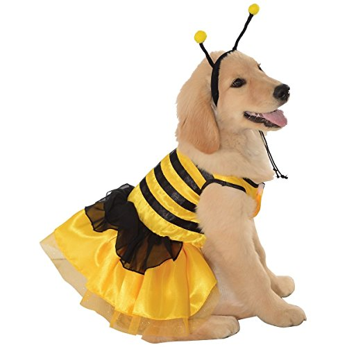 Queen Bee Costumes Size Plus (Bumblebee Dress Pet Pet Costume -)