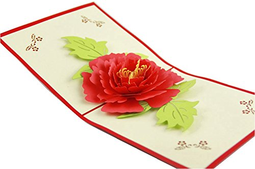 IShareCards Handmade 3D Pop Up Greeting Cards for Every Occasion (Peony)
