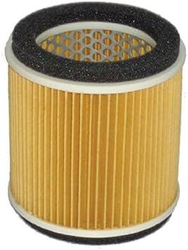 Hiflofiltro HFA4202 Premium OE Replacement Air Filter