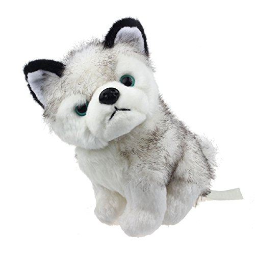 Husky Puppy - 9