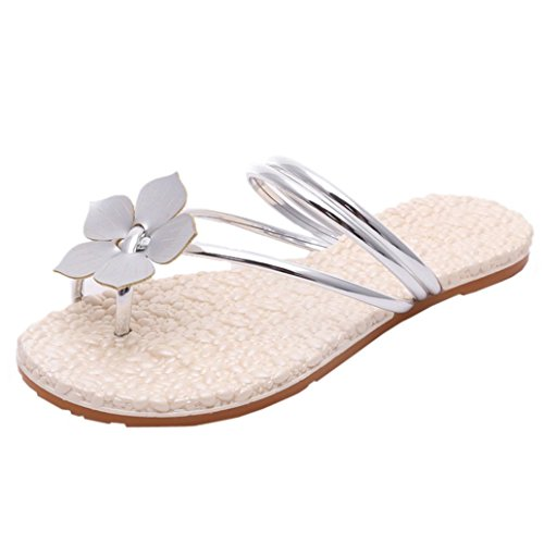 Jamicy® Frauen Mädchen Sandalen, Sandalen, Sandalen, Damen Sommer Blumen Flache Anti Skidding Strand Casual Flip Flops Sandalen Schuhe Silber 166155