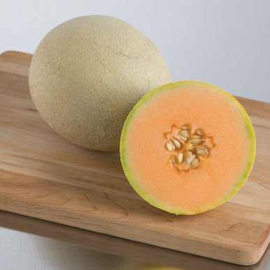David's Garden Seeds Fruit Cantaloupe Sarah's Choice D2784 (Orange) 50 Hybrid Seeds