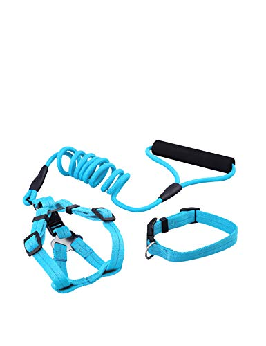 Dog Leash Set for Dog, Leash Set for Dog including Dog Harness , Dog Collar, Dog Training Leash (3 IN 1), for Samll, Medium and Large Dog, Perfect for Daily Training, Walking, Hiking (S Light blue) (And Harness Collar Large Dog Set)