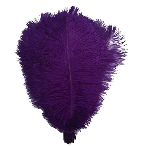 Shekyeon Purple 16-18inch 40-45cm Ostrich Feather DIY Craft Feather Pack of 10