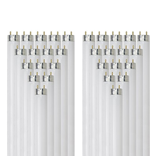 (Sunlite F32T8/SP841 32-Watt T8 Linear Fluorescent Light Bulb Medium Bi Pin Base, 4100K, 30-Pack)