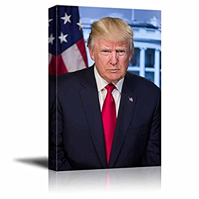 Dazzling Print, Quality Artwork, Portrait of Donald Trump (45th President of The United States) American Presidents Series