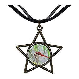 Chicforest Bronze Retro Style Beautiful Lovely Dragonfly Five Pointed Star Pendant