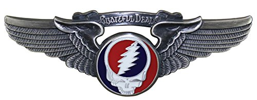 (Grateful Dead Steal Your Face Large Pilot Wing Pin)
