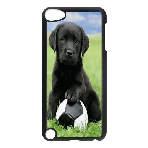 Ipod Touch 5 Case Soccer Pup Black Labrador Retriever Puppy Dog Puppies Hound Dogs,dog Play Football, [Black] by Stevebrown5v (Ipod Feet compare prices)