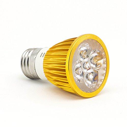 Garden Lights Downlights - 1