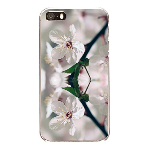 "Disagu Design Case Coque pour Apple iPhone 5 Housse etui coque pochette ""Apfelblüte"""