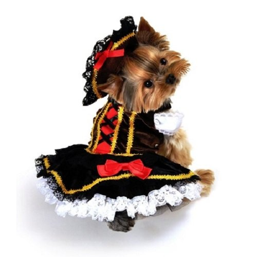 [Domestic Pet Happy Halloween Swashbuckler Pirate Girl Dog Costume] (Swashbuckler Girl Pirate Costumes)