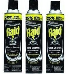 Raid Wasp and Hornet Spray- 17.5 ounces - 3 Pack