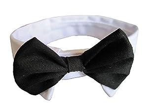 Leegoal(TM) Dog Cat Pet Stripe Bow Tie Neck Tie with White Collar