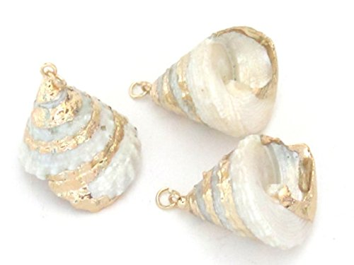 - Gorgeous conical pearl Troca shell gold edged pendant - 1 piece - SP031A