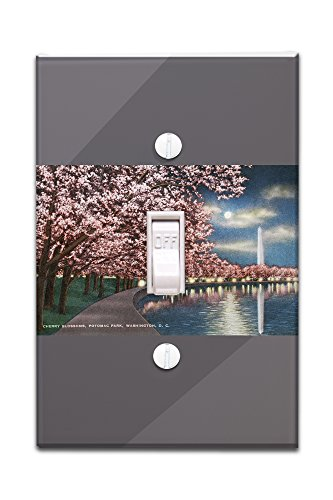 Washington DC - Potomac Park and Blossoming Cherry Trees Scene at Night (Light Switchplate Cover)
