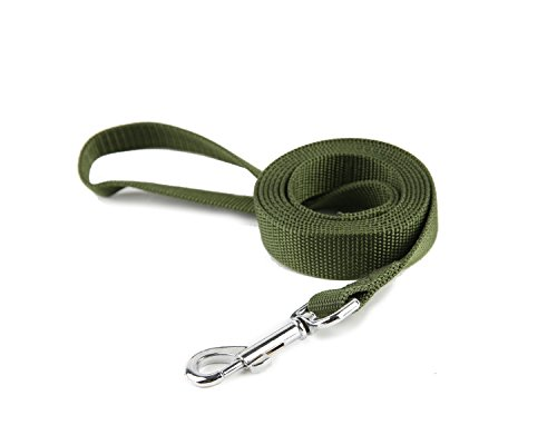TAIDA Strong Durable Nylon Dog Training Leash, 6 Feet Long, 1 Inch Wide, for small and medium dog (Green)