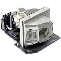 Dell Compatible 310-6896, 725-10046 / 0N8279 RPTV Lamp with Housing