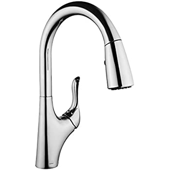 Project Source Chrome 2 Handle Low Arc Kitchen Faucet