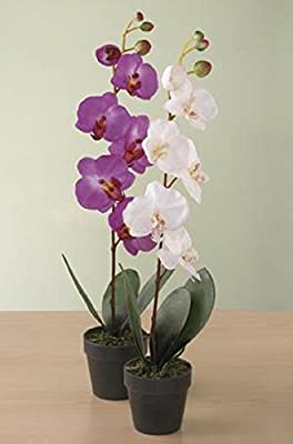 Home-X® LED Lighted Orchid in Vase