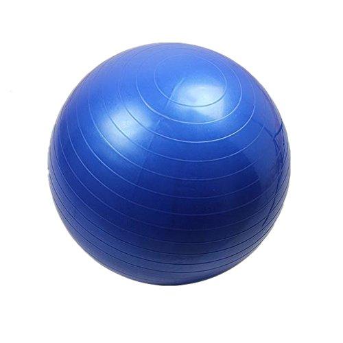 Yoga Exercise Balls Anti-burst and Slip Resistant Fitness Static Strength Exercise Stability Ball