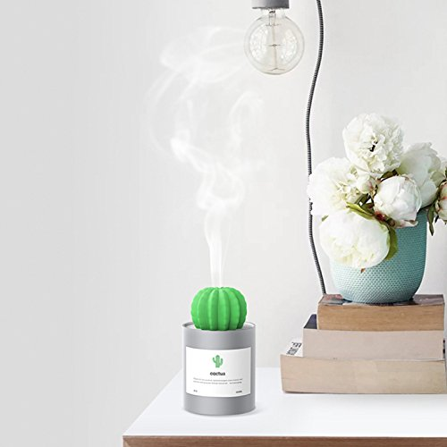 Diffuseur dair Portable Humidificateur pour la Maison Bureau et la Chambre OFKPO Mini Cactus Humidificateur