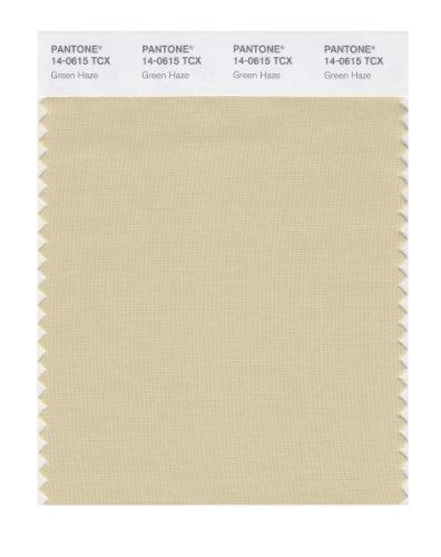 PANTONE Smart 14-0615X Color Swatch Card, Green Haze