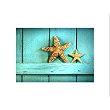 STARFISH RUSTIC TURQUOISE DOOR SEA BEACH BLACK FRAMED ART PRINT PICTURE B12X9694