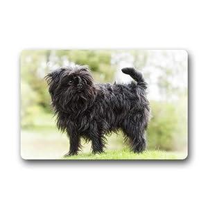 CustomLittleHome Affenpinscher Dog Custom Doormats Rug Non Slip Mats Indoor/Outdoor/Bathroom/Decor Area Rug(23.6x15.7 inch) 1