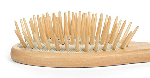 Paddle Hair Brush - Dry Scalp Bamboo Paddle Brush for Hair Detangler, Dandruff Scalp, Travel size by Beyond 100 Naturals (Eco Hair Dryer Brush compare prices)