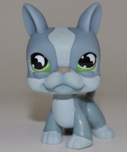 - Boston Terrier #857 (Blue, Green Eyes) - Littlest Pet Shop (Retired) Collector Toy - LPS Collectible Replacement Single Figure - Loose (OOP Out of Package & Print)