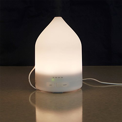 NSKI 150ml Battery Built-in Series LED Aroma Diffuser Essential Oil Air Humidifier FD17W - Oil 150 Ml Series