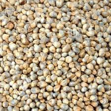 Ikshvaku Organic Pearl Millet | Bajra | Natural Indian Farm Products from Karnataka | ONE Pack