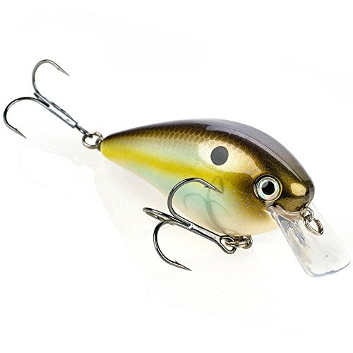 Strike King Square Bill 2.5 Crankbait, Summer Sexy Shad, 5/8-Ounce