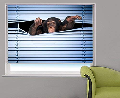 MONKEY PEEKING THROUGH THE BLIND Printed Picture Blackout Photo Roller Blind - Custom Made Printed Window Blind/Shade