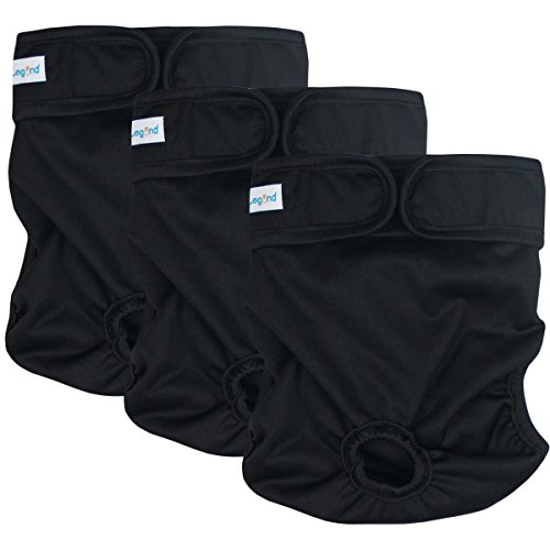 - Paw Legend Reusable Female Dog Diapers(3 Pack,Black,Large)