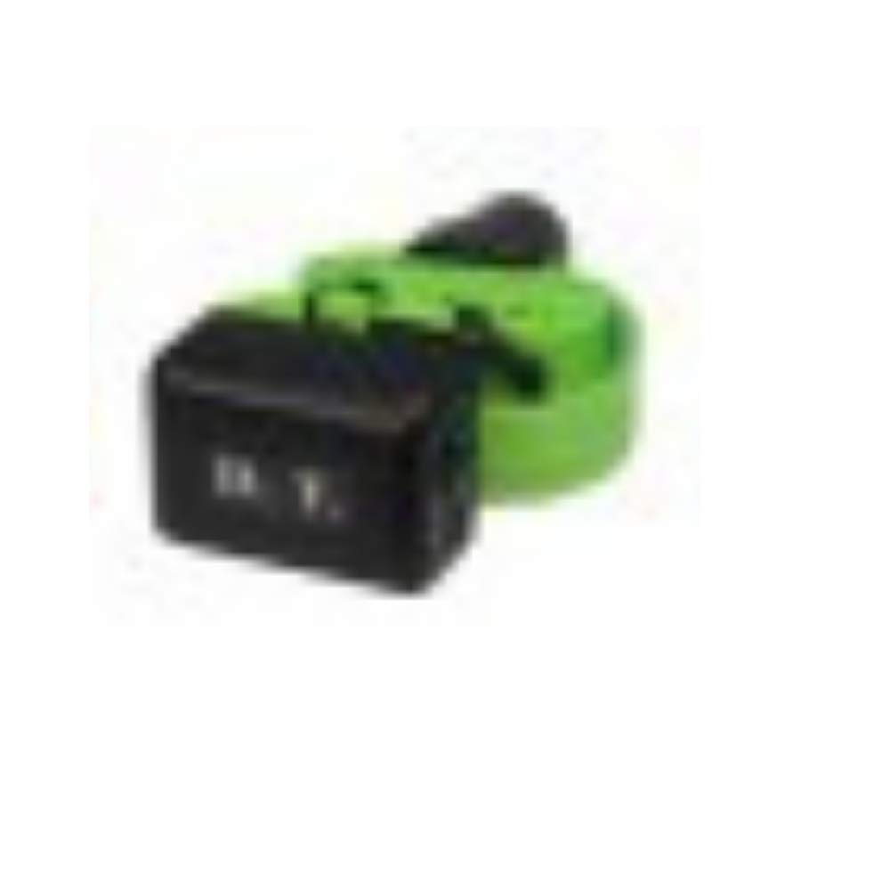 D.T. Systems R.A.P.T. 1450 Remote Dog Trainer, Green by D.T. Systems