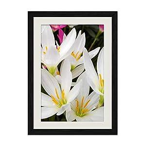 DZ.HAIKA White Orchid Flowers - Natural Scenery Art Print Home Decor Wooden Frame Poster(Black Frame Vertical 12x16inch) 78