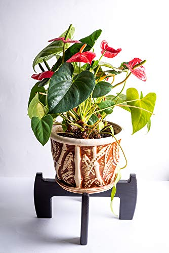Mid Century Wooden Plant Stand Indoor - Adjustable for pots from 6 to 9,5 Inches max - Modern Corner Flower Wood Potted Planter Holder - Pot NOT Included