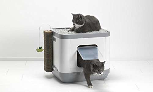 catconcept multifunctional space efficient cat litter box bed and playground all in one. Black Bedroom Furniture Sets. Home Design Ideas