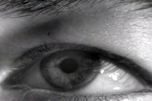 Animas Eye Care - 4