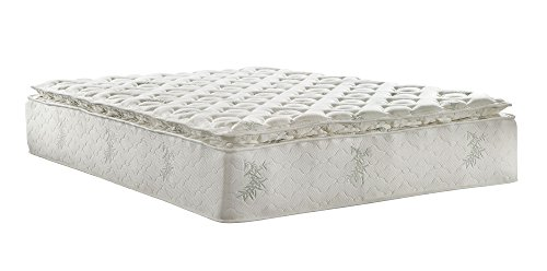Signature Sleep Signature 13-Inch Independently Encased Coil Mattress with CertiPUR-US Certified Foam,...