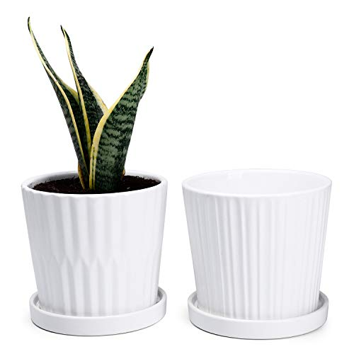 Medium Plant Pots – 6 Inch White Cylinder Ceramic Planters with Attached Saucers, Two Line Grain, House and Office Decor…
